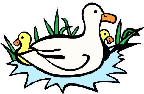 484x317 Rubber Duck Clip Art Free Clipart 2 Clipartix 2