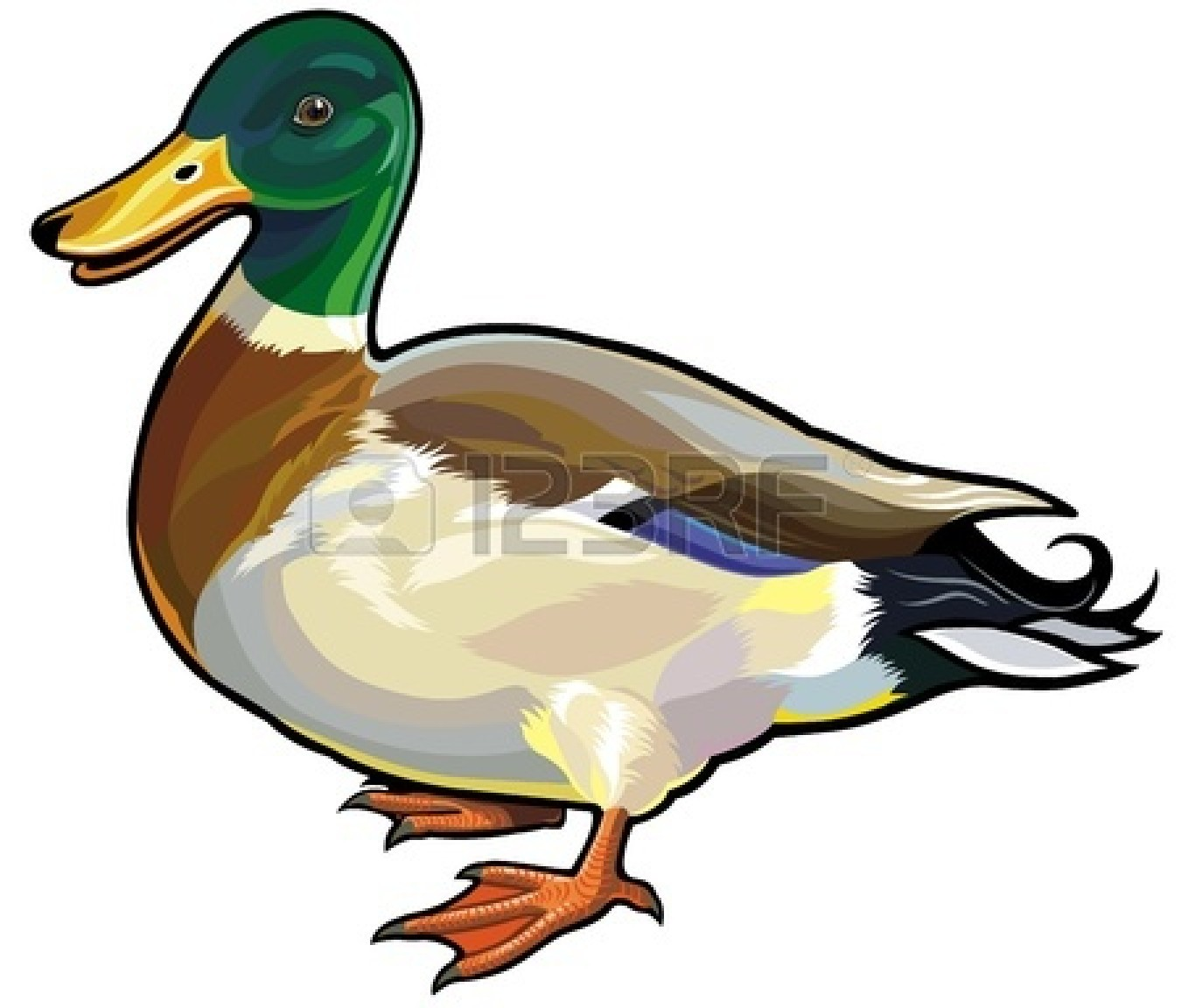 1350x1152 Green Ducks Clipart