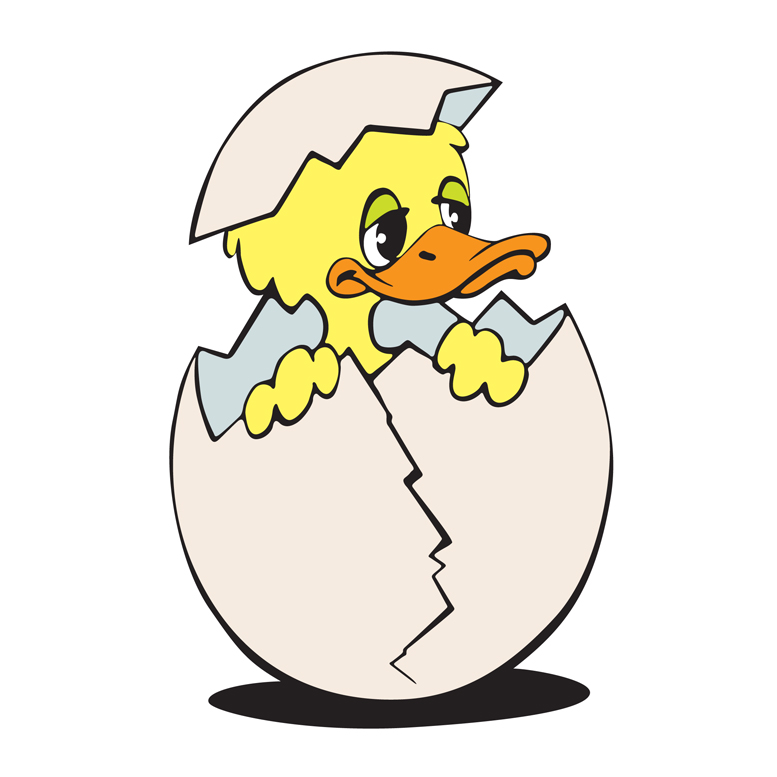 777x777 Duck Hatching Clipart