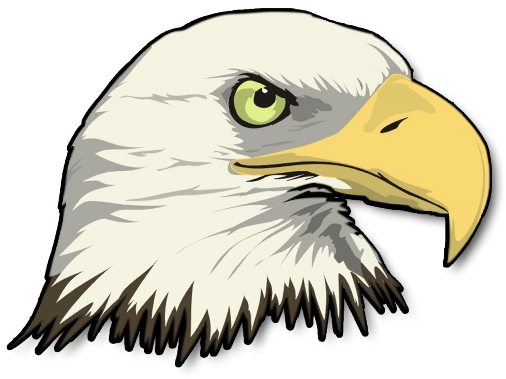 1024x768 Pleasurable Inspiration Bald Eagle Clip Art Top 88 Clipart Free
