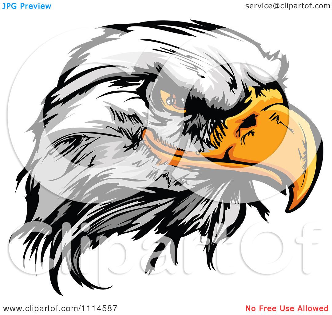 1080x1024 Bald Eagle Clip Art
