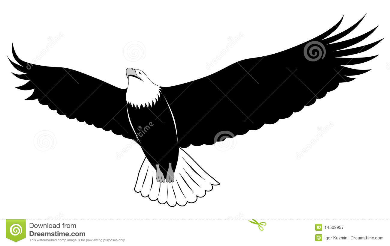 1300x821 Clip Art Eagle Feather Clip Art