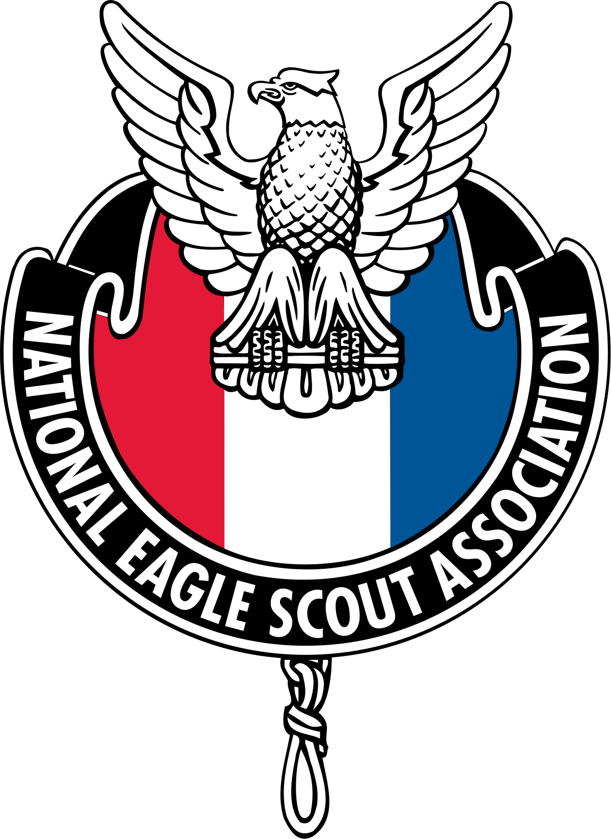 1200x1649 National Eagle Scout Association