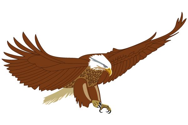 600x400 Flying American Eagle Vector Image Free Vectors Ui Download