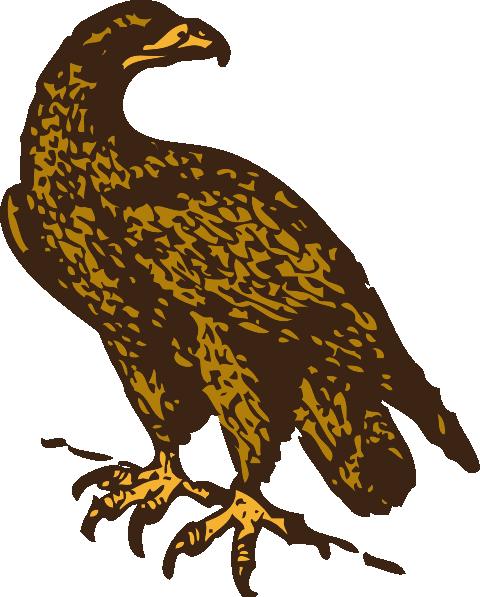 480x597 Golden Eagle Clip Art Free Vector 4vector