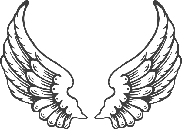 600x428 Grey Eagle Wings Clip Art