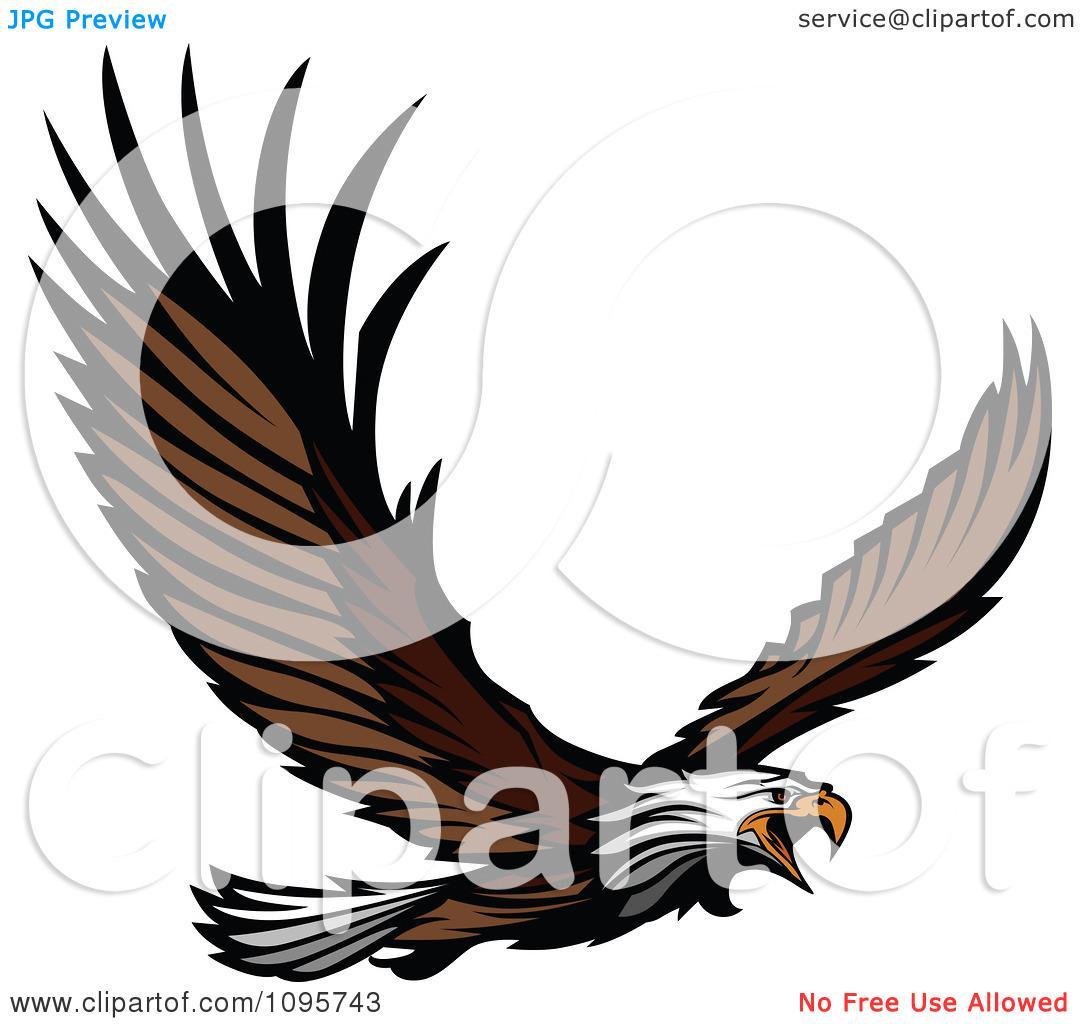 1080x1024 Eagle In Flight Clipart