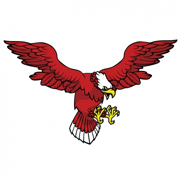 626x626 Eagle With Open Wings Design Vector Free Download