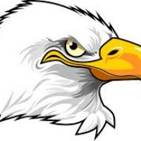 200x200 Eagles Clipart