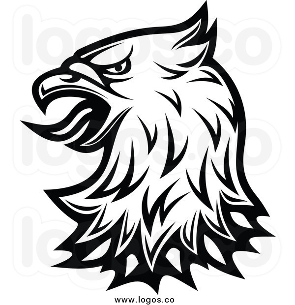 600x620 Black Eagle Clipart Hawk