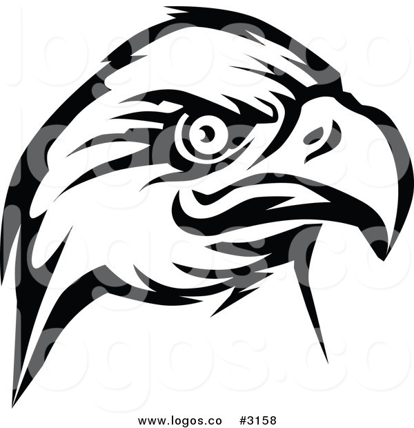 600x620 Black Eagle Clipart Head
