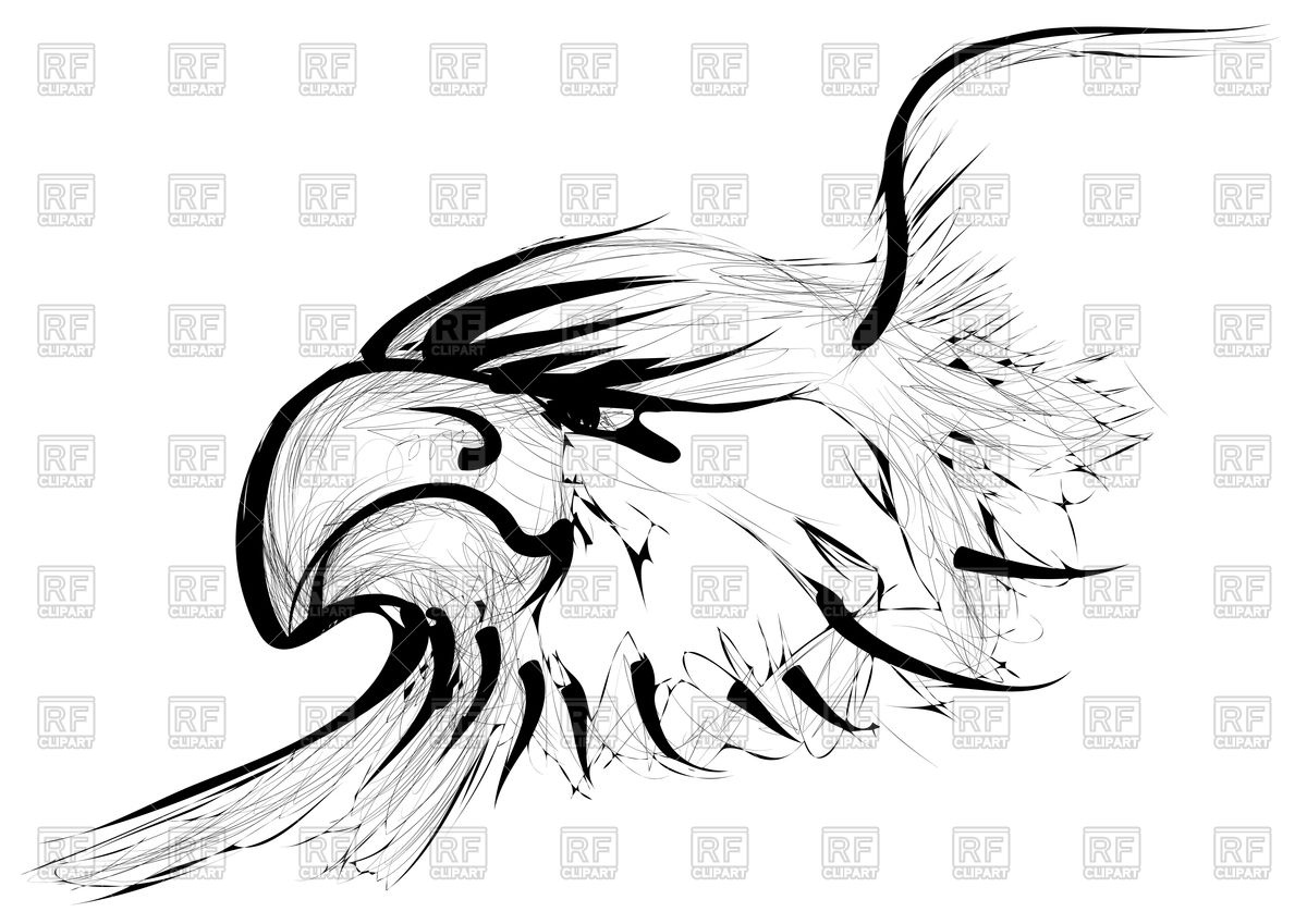1200x849 Golden Eagle Isolated On A White Background Royalty Free Vector