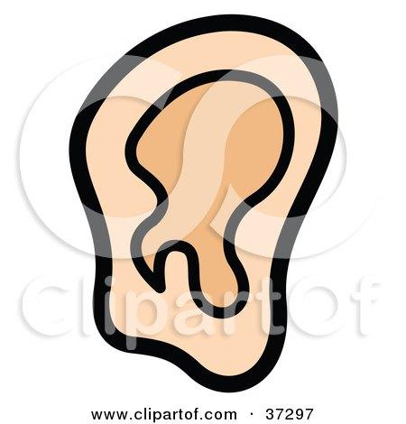 450x470 Ear Clip Art