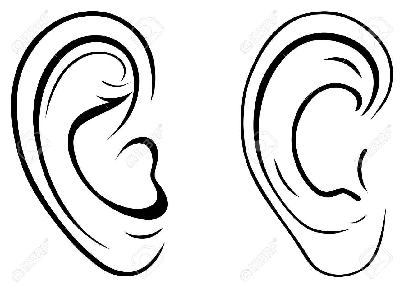 1300x925 Pair Clipart Human Ear