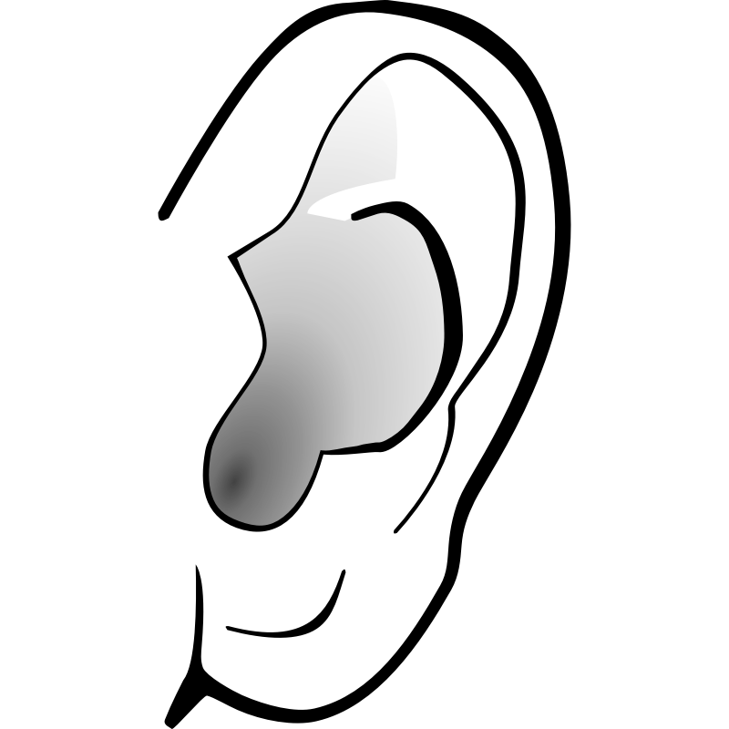 800x800 Ear Clipart Free Images