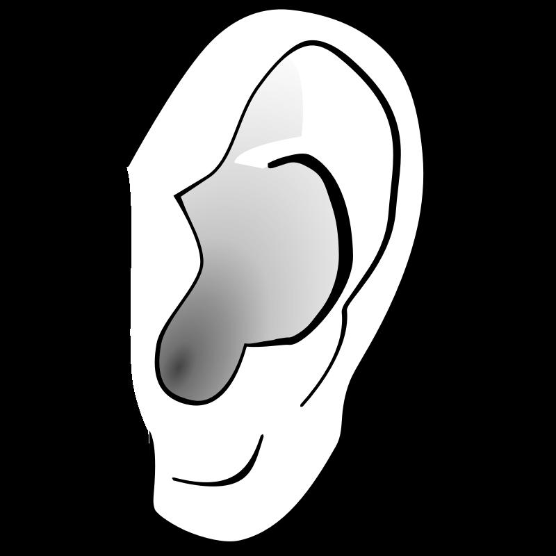 800x800 Listener Clipart Ear Clip Art Listening Ear Clipart