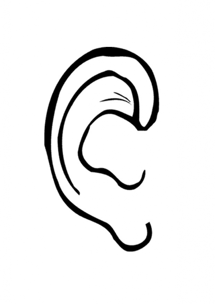 725x1024 Left Ear Clipart Left Ear Clipart Left Ear Clipart Free Clip Art