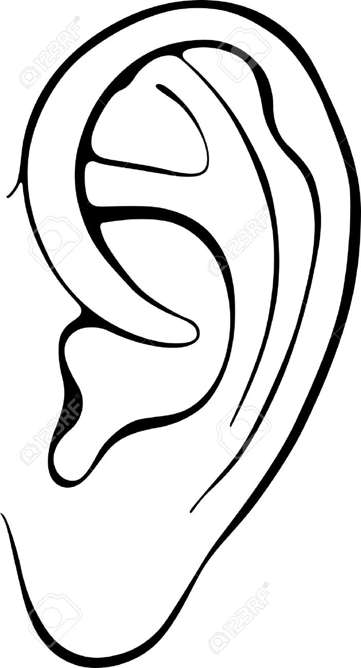 703x1300 Ear Clipart Black And White Png