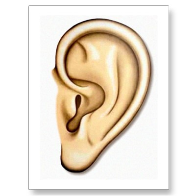 400x400 Make Meme With Right Ear Clipart Listening Ears 2