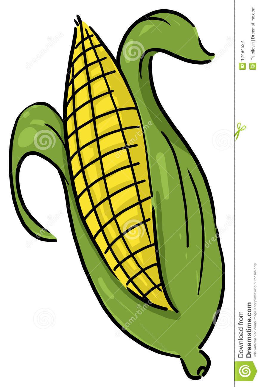 876x1300 Corn Clipart Ear Corn
