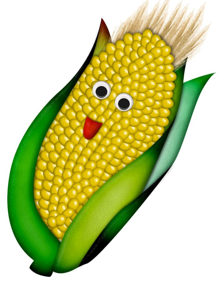 697x900 Corn Clipart Vegitable