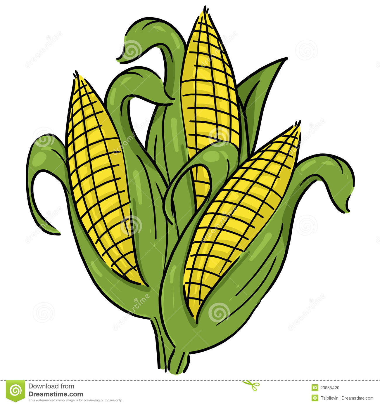 1300x1390 Ear Of Corn Clipart