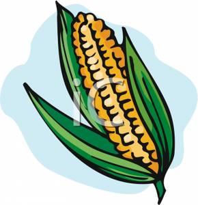 290x300 Ear Of Corn Clipart Image