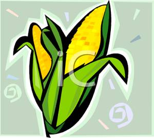 300x270 Golden Ears Of Corn Clip Art Image