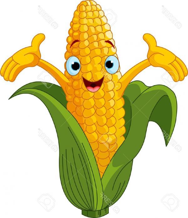 600x698 Yellow Corn Clipart, Explore Pictures