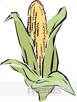 295x388 Corn Clip Art Vegetable Clipart