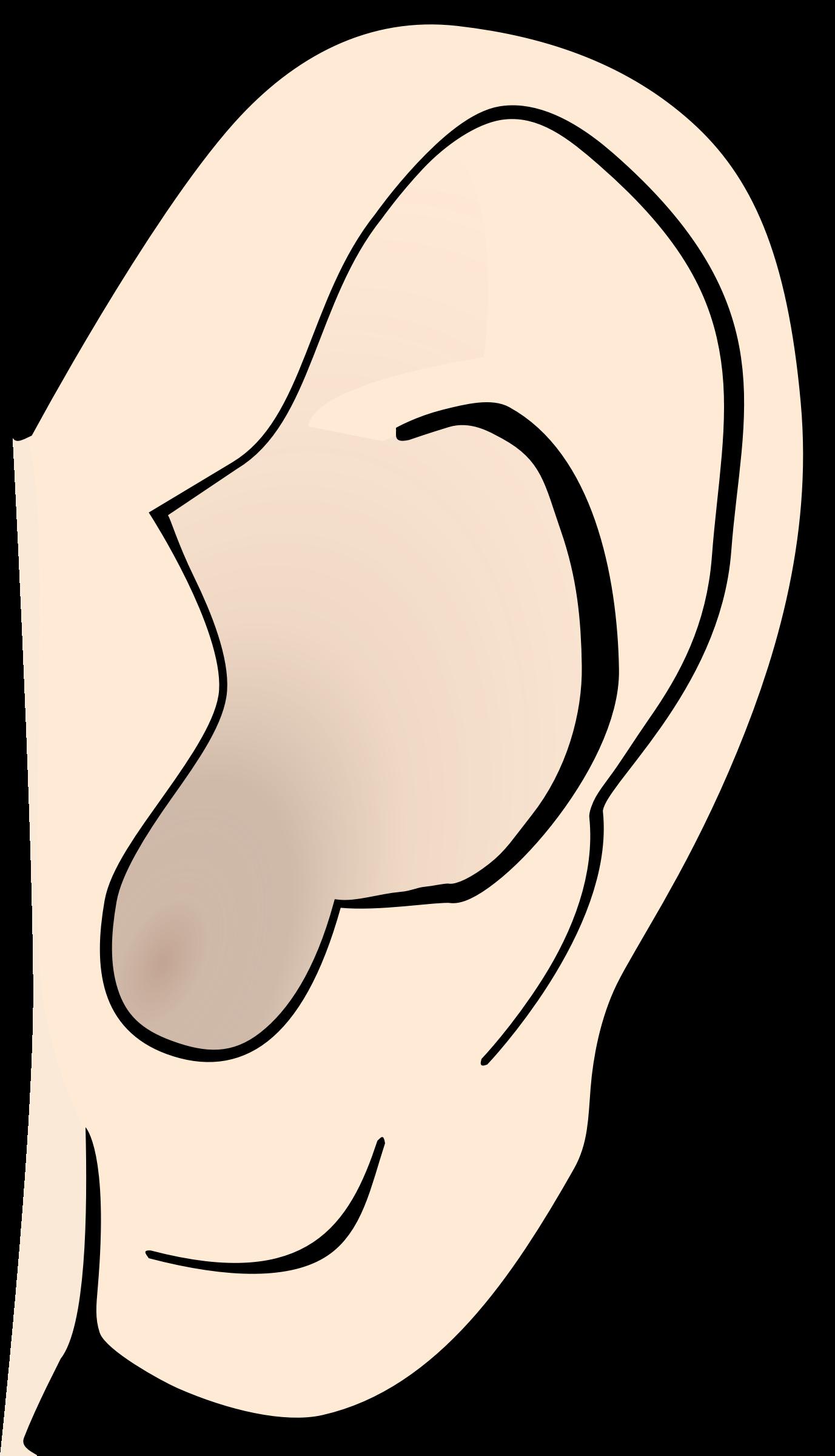 1377x2400 Ears Clip Art