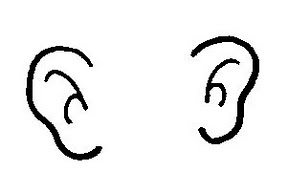 288x193 Pair Of Ears Clipart