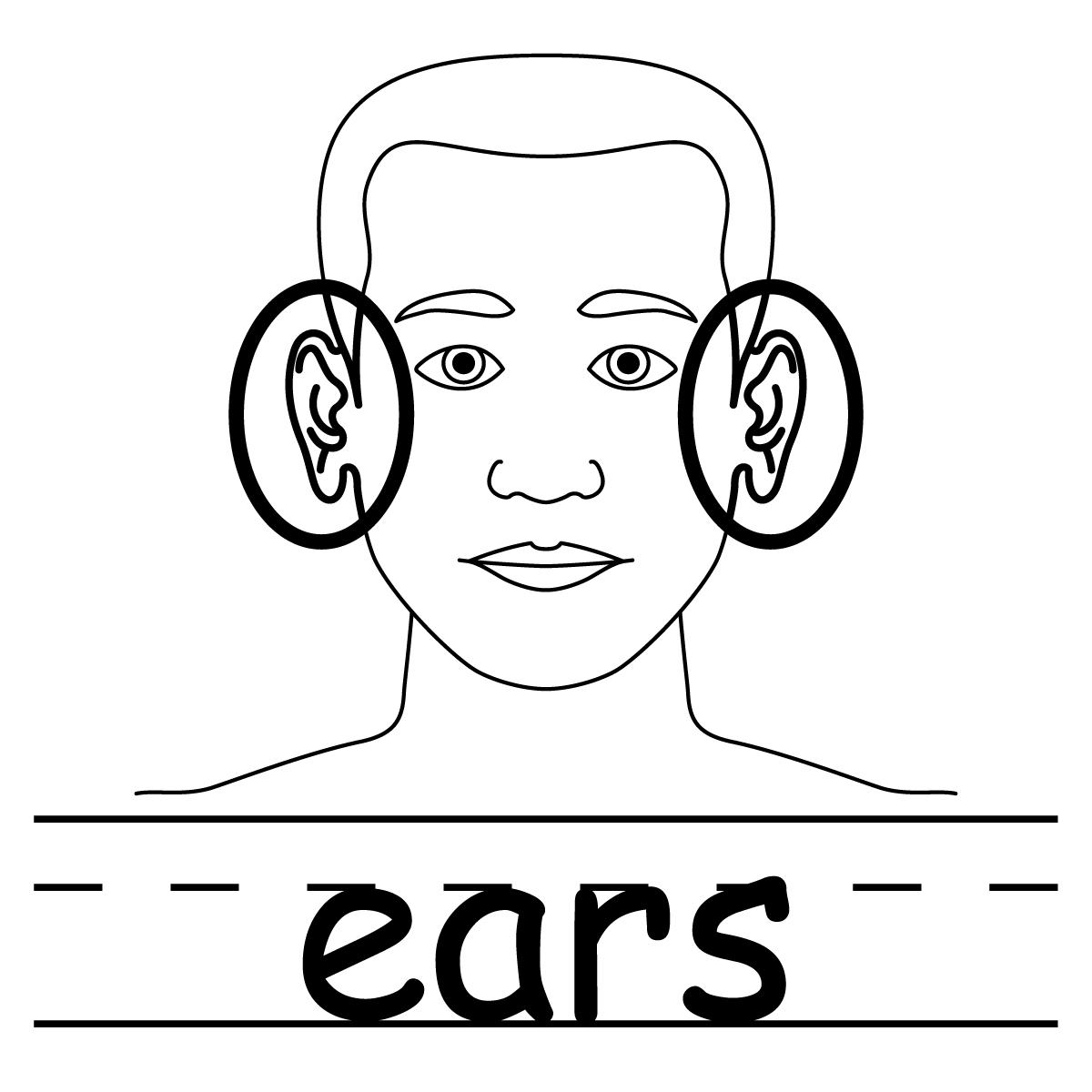 1200x1200 Two Ears Clip Art Clipart Panda