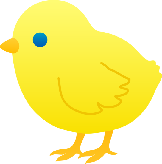 544x550 Cute Yellow Baby Chick