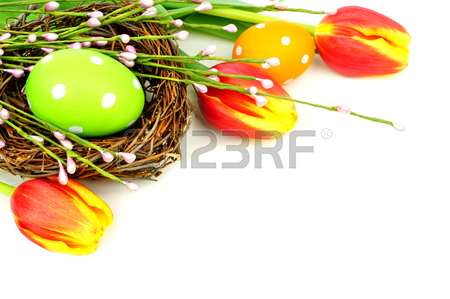 450x299 Easter Eggs And Nest With Tulips Forming A Corner Border Over