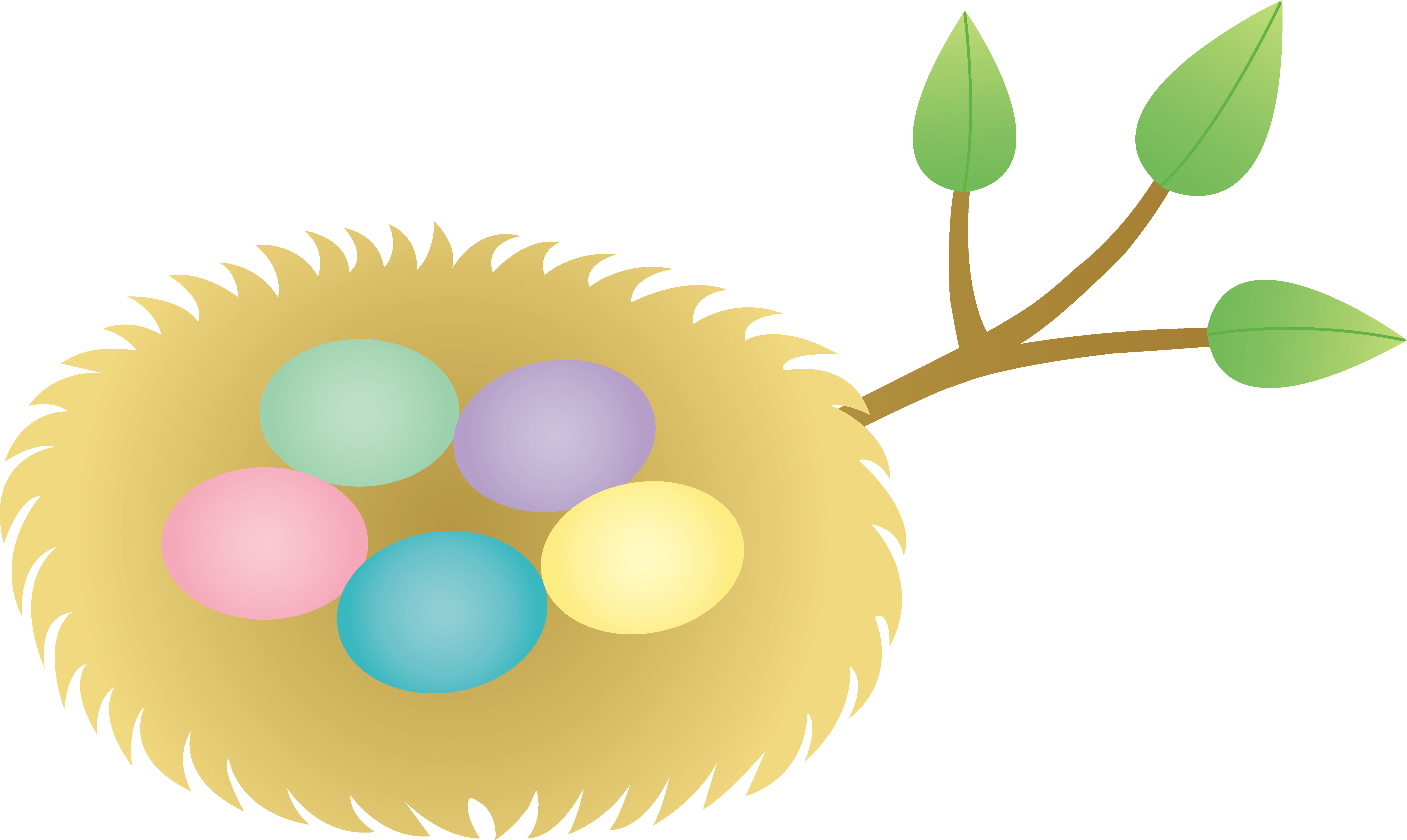 6408x3828 Nest With Eggs Clipart