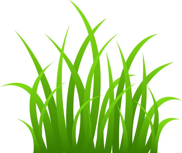 736x620 Sea Grass Clipart Easter Grass