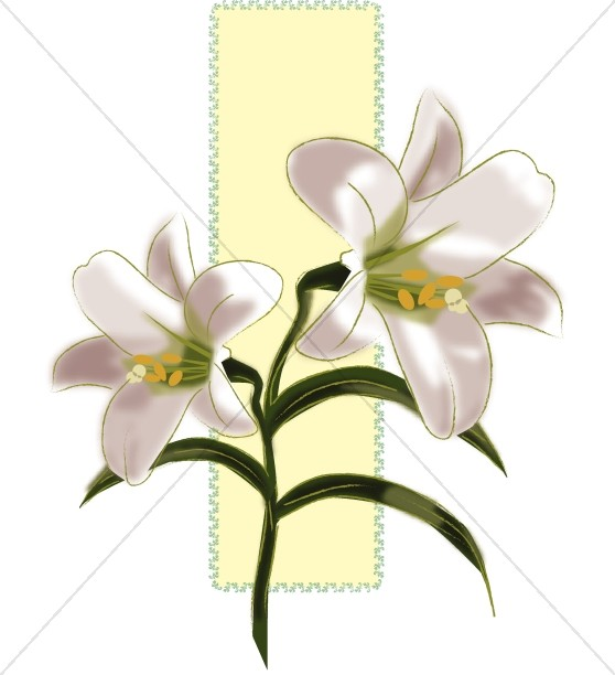 558x612 Lilies For Easter Decorations Church Flower Clipart