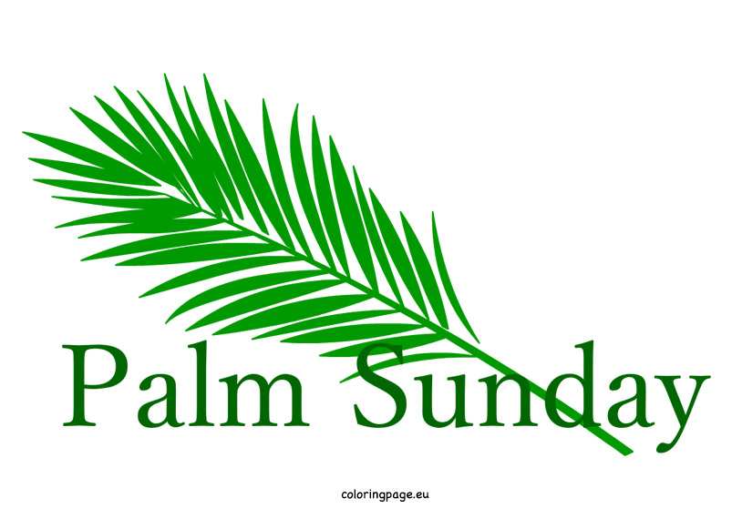 803x581 Graphics For Palm Sunday Clip Art Graphics