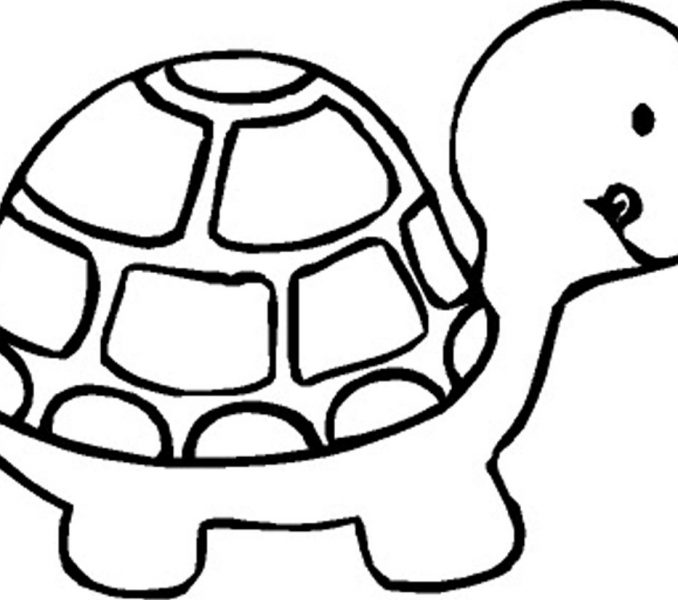 678x600 Free Easy Coloring Pages For Toddlers 31 For Your Line Drawings
