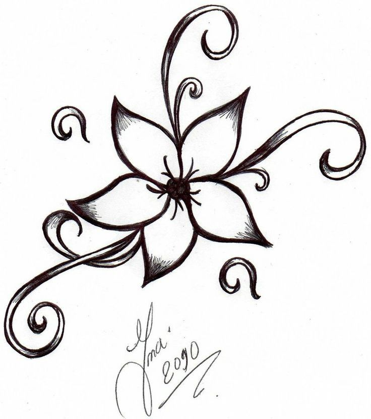 736x830 Drawn Flower Easy