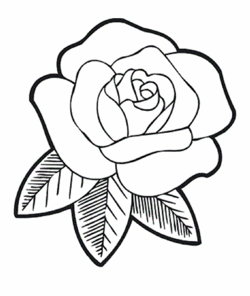 864x1024 Rose Drawing For Kids How To Draw A Rose Flower Easy Step Step
