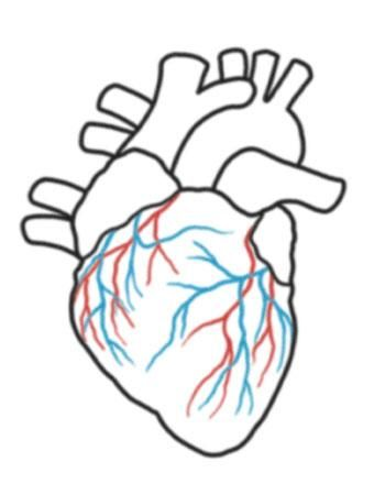 350x450 33 Best Actual Heart Outline Tattoo Design Images
