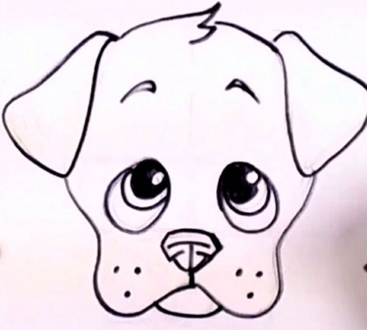 736x662 The 25+ best Puppy drawing ideas Dog drawing easy