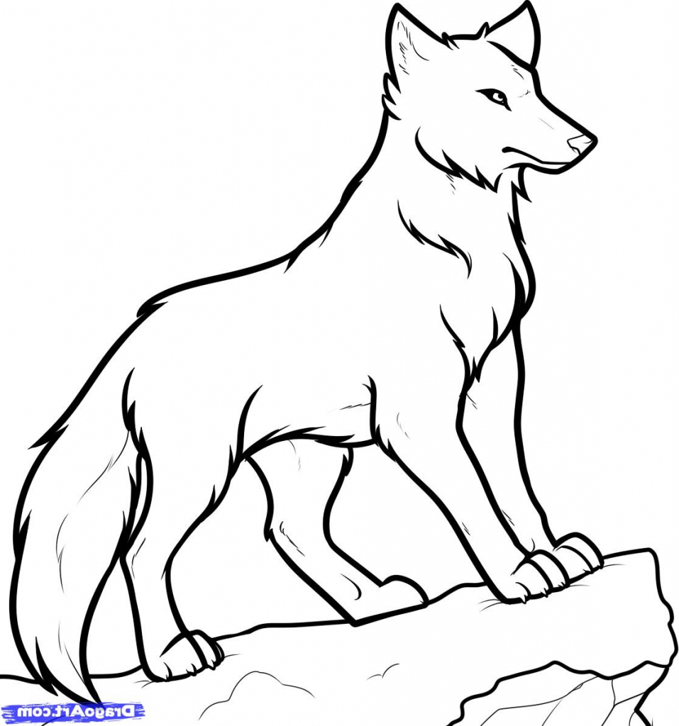 957x1024 Easy Drawing Of A Wolf