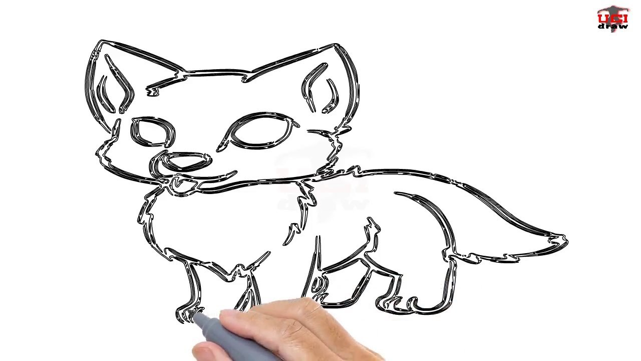 1280x720 How To Draw A Wolf Pup Easy Step By Step Drawing Tutorials