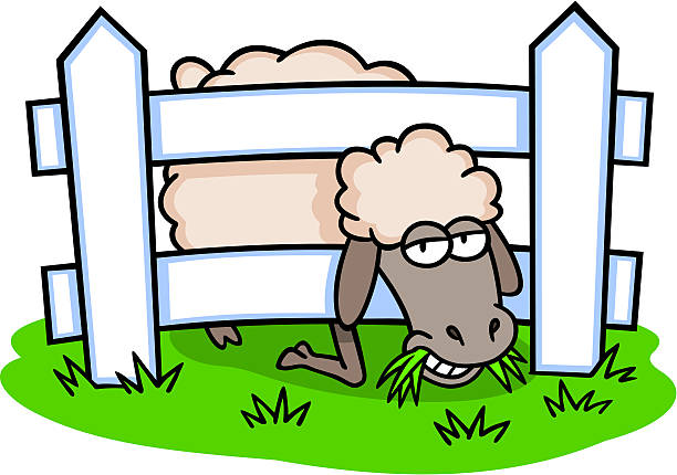 612x430 Sheep Eating Grass Clipart Amp Sheep Eating Grass Clip Art Images