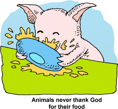 400x368 Image Download Thankless Pig