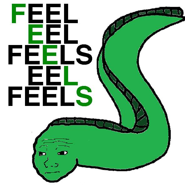 592x592 Feel Eel Feels Eel Feels Feels Know Your Meme