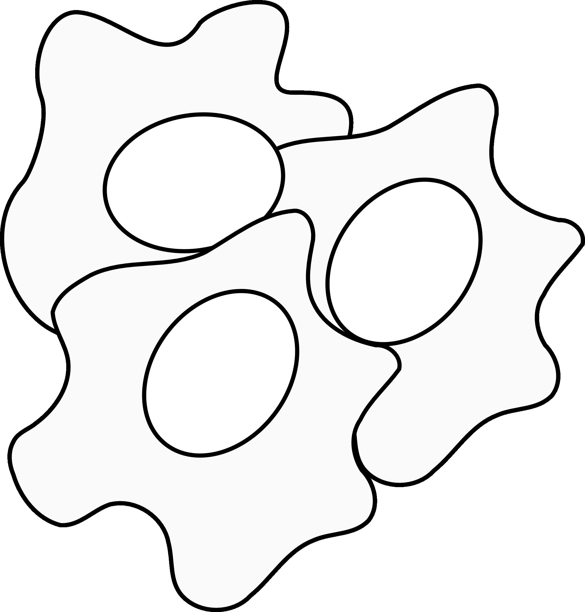 1979x2073 Egg Black And White Clipart 2074549